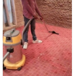 Red Carpet Cleaning Service