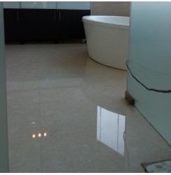 Commercial Floor Repolishing Service