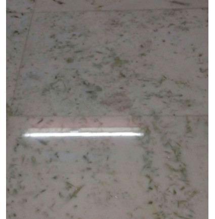 Marble Floor Polishing Service In Sardar Patel Marg, Delhi